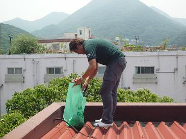 屋上屋根掃除2