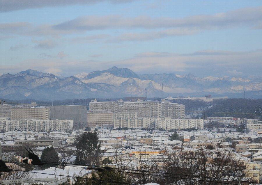 2014-02-15-snow-003.jpg