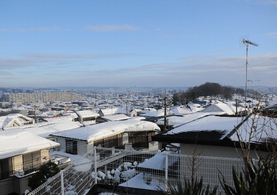 2014-02-15-snow-004.jpg