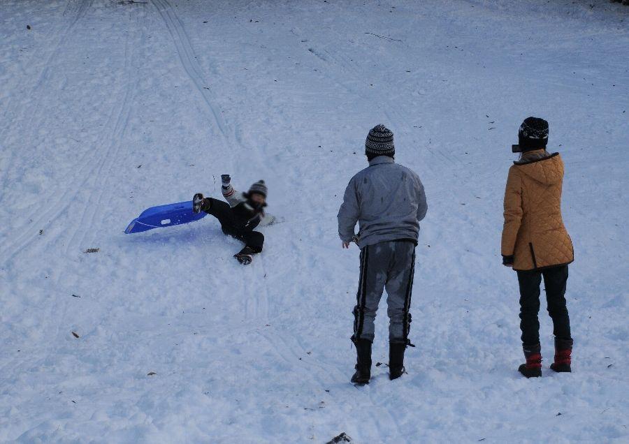 2014-02-15-snow-005.jpg
