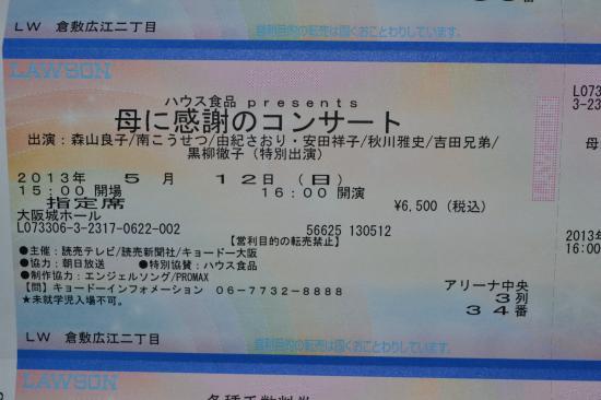 DSC_0054_convert_20130331000135.jpg