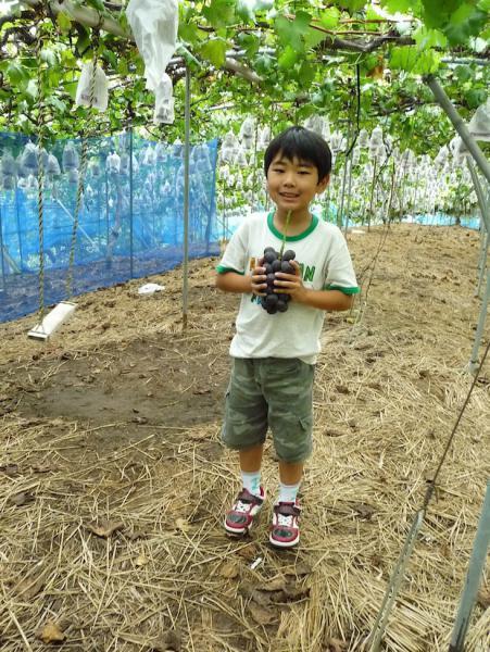 ぶどう狩り2012-03