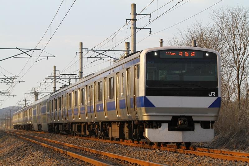 e531_1a.jpg