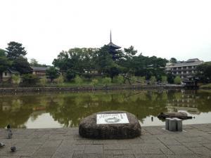 sarusawa0919_convert_20140919132227.jpg