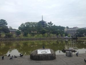 sarusawa0924_convert_20140924114114.jpg