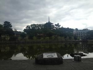sarusawa1004_convert_20141004125900.jpg