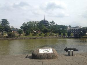 sarusawa1012_convert_20141012140037.jpg