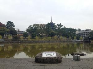 sarusawa1031_convert_20141031111045.jpg