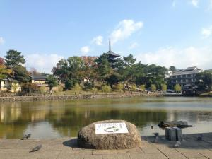 sarusawa1107_convert_20141107115844.jpg
