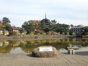sarusawa1108_convert_20141108113341.jpg