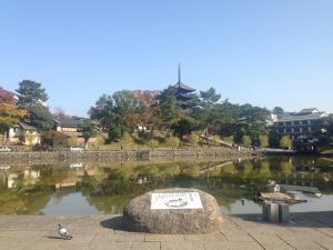 sarusawa1111_convert_20141111120258.jpg