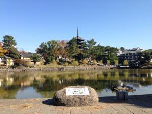 sarusawa1114_convert_20141114113243.jpg