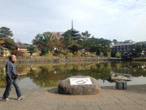 sarusawa1117_convert_20141117120132.jpg