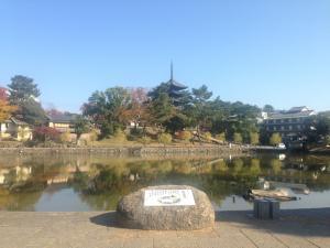 sarusawa1119_convert_20141119114438.jpg