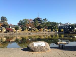 sarusawa1121_convert_20141121142237.jpg