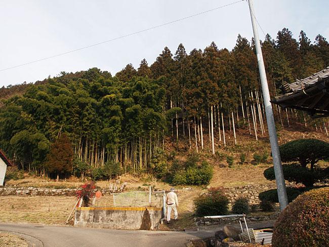 下畑野川(駄馬)・須我神社(天王さん)