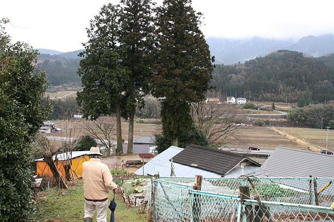 東明神・新田神社
