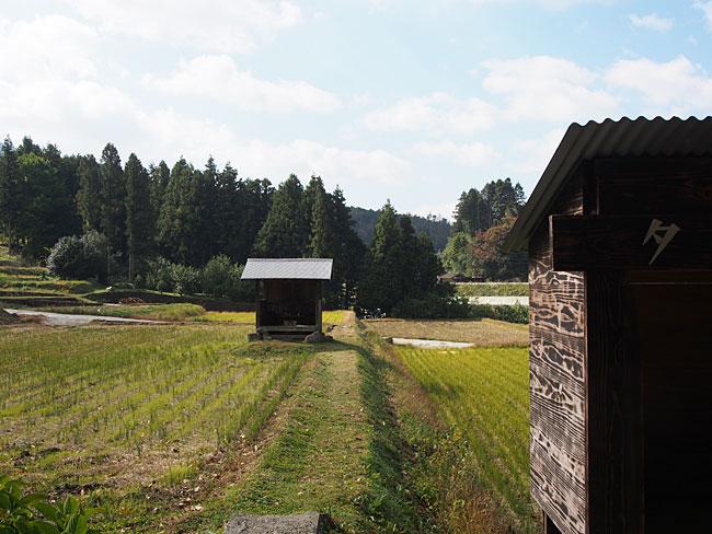 露峰(若宮)・田中神社