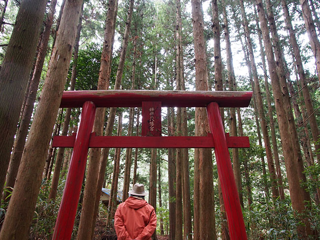 柳谷(稲村)・鎌倉正八幡宮