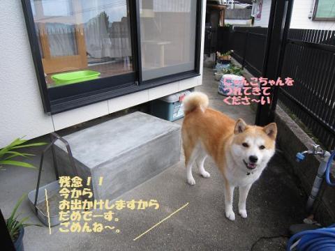 IMG_9820うめちゃん