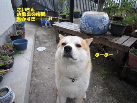 IMG_9810うめちゃん