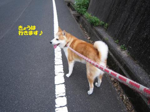 IMG_1489うめちゃん