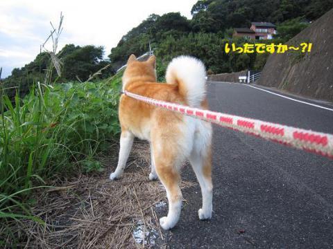 IMG_1508うめちゃん