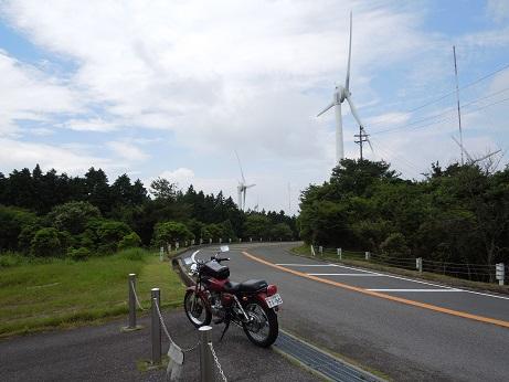 aoyamakougen1