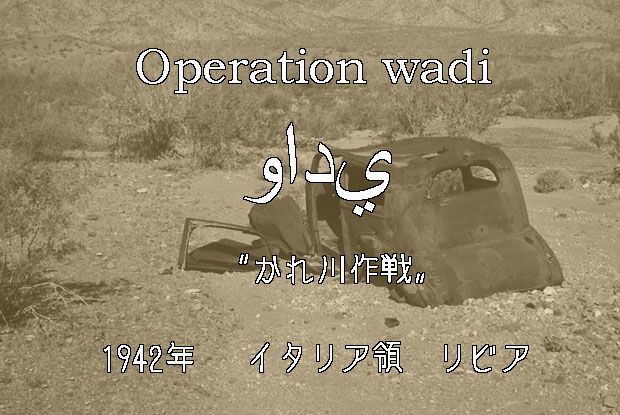 wadi03.jpg