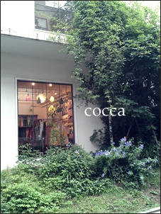 cocca2.jpg