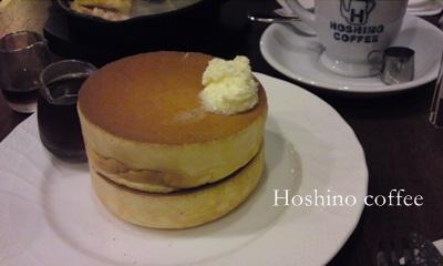 hoshino_20120911100019.jpg