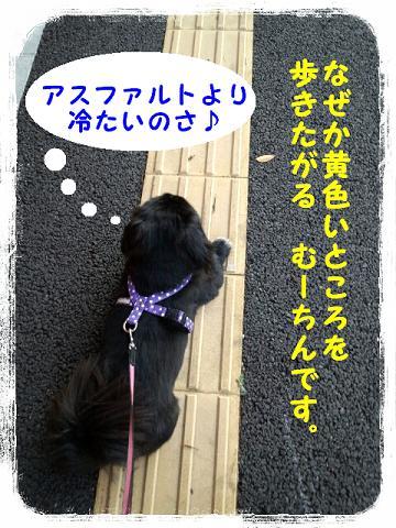 2012091203.jpg