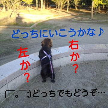 2012092802.jpg