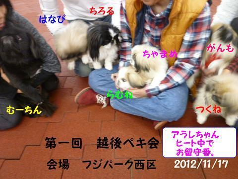 2012111720.jpg