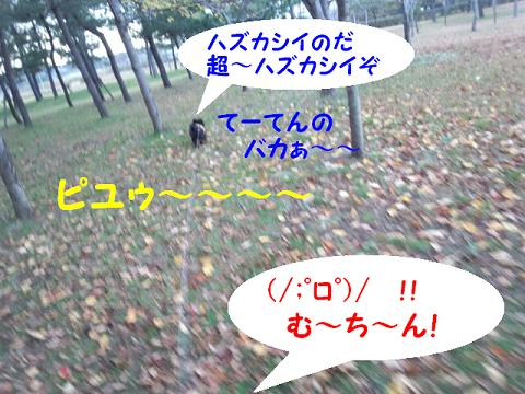 2012112204.jpg
