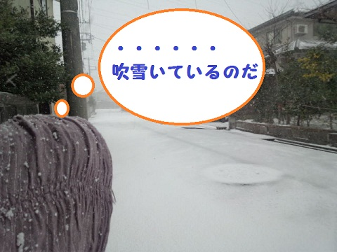 2012122602.jpg