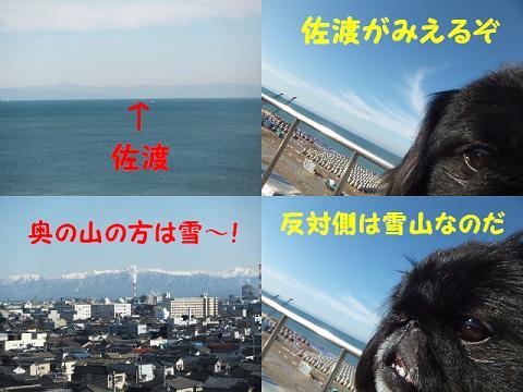 BLOG2489.jpg