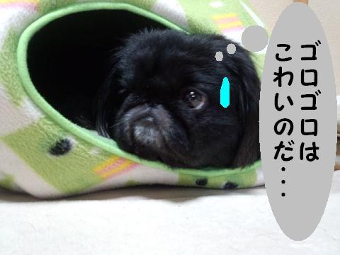 kaminari02.jpg