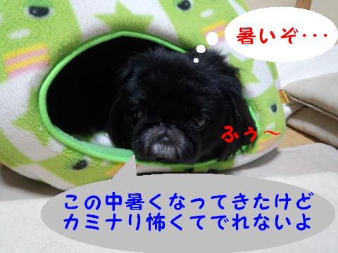 kaminari03.jpg