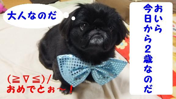nisai050801.jpg
