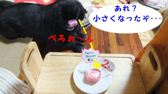 nisai050802.jpg