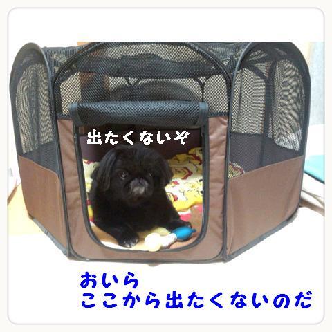 odekakege-ji.jpg