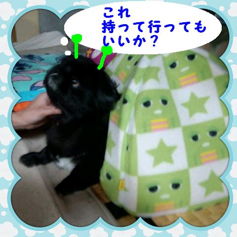odekakege-ji01.jpg