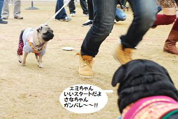 いいぞ~がんばれ!!
