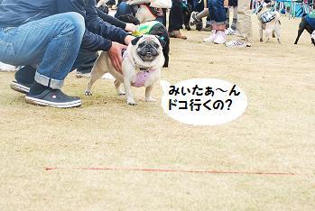 みいたぁ~~~ん!!