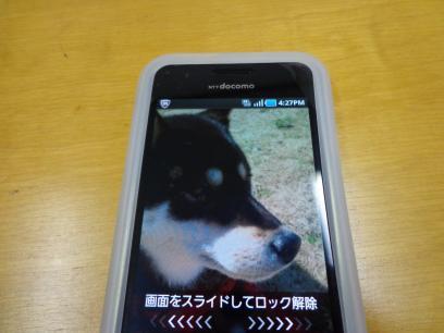 SC00568_convert_20130219163624.jpg