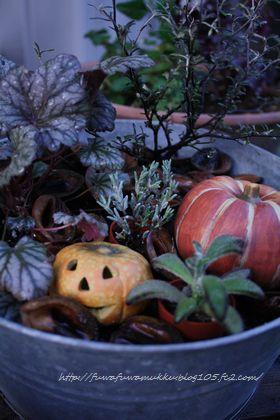 くるカラとハロウィーンかぼちゃ