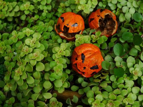 ハロウィンのくるカラかぼちゃ