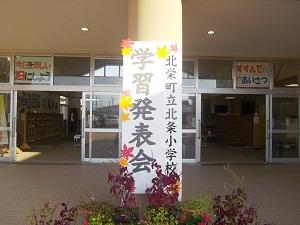 IMGP3629.jpg