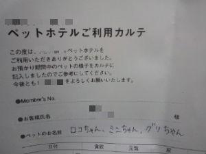 120617_1947~01_copy
